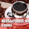 10 Дивних фактів про каву