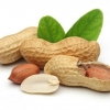 Чим корисний арахіс і чому його варто обов`язково включити в свій раціон?