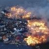 Цунамі в японії: природа - ось страшна сила