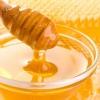 Буркуновий мед - панацея від багатьох хвороб