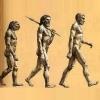 Гіпотези походження людини: загальноприйняті і альтернативні теорії