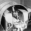Лайка - перша собака в космосі