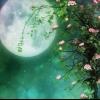Місячний календар на травень 2015 року
