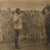 Наймолодший солдат на першій світовій війні