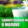 Дивовижні факти про молоко