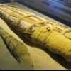 У єгипті археологи виявили мумію величезного крокодила