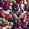 У яких продуктах харчування найбільший вміст протеїну?