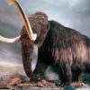 Воскресіння мамонта