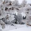 Замерзаюча європа (31 фото)